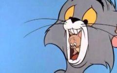 猫和老鼠主题的情侣头像