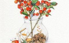 手绘卡通花朵图片